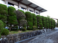 The grounds leading to the temple in Fukuoka.
